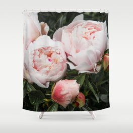 Flower Photography | Peonies Cluster | Blush Pink Floral | Peony Shower Curtain