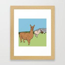 Llama-rama Framed Art Print