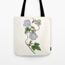 Ivy-Leaved Morning Glory Tote Bag
