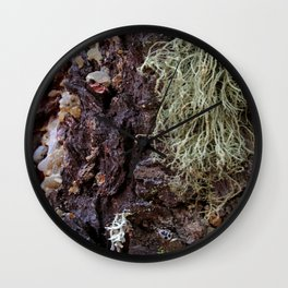 Ashland Oregon Moss RMD Designs Wall Clock