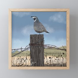 California Quail Framed Mini Art Print