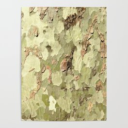 Nature's Camo Poster