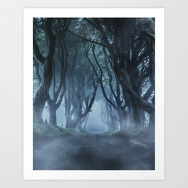 Very cold foggy morning at Dark Hedges Art Print