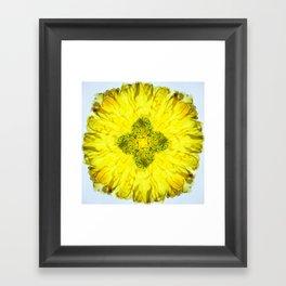kaleidoscope - Flower Framed Art Print