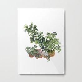 House Plants Watercolor Illustration 6 Metal Print