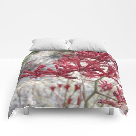 Red Kangaroo Paw Comforters