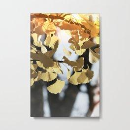 Whisper in the Ginkgo Tree Metal Print