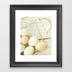 Robin's Egg Farm Framed Art Print