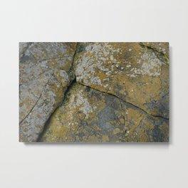 Ancient Rocks with Lichen Texture Metal Print