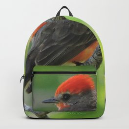 Vermilion Flycatcher Backpack