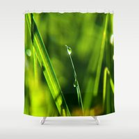 pagan Shower Curtains featuring Dew on grass at early backlight by UtArt