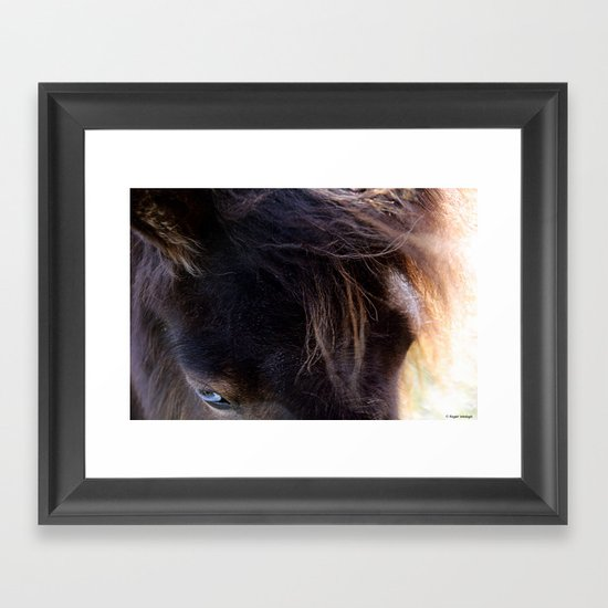 Old Blue Eyes Framed Art Print