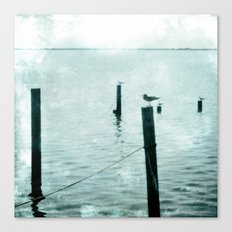 Four Seagulls Canvas Print