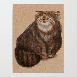 Grumpy Kitty Poster