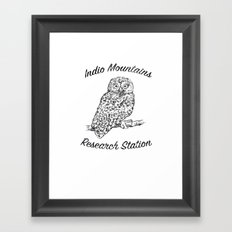 Indio Mountains Research Station - Elf Owl Framed Art Print