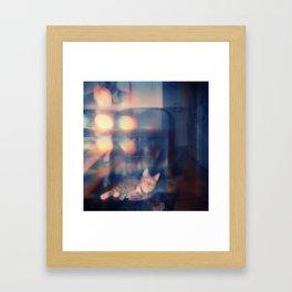 Light Study, Finn Framed Art Print