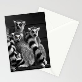 Gang Of Ring-Tailed Lemurs Stationery Cards