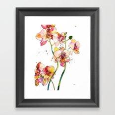 Pink Orchids Framed Art Print