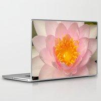 darwin Laptop & iPad Skins featuring Nymphaea 'Darwin' by Draco Anima