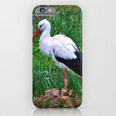 Storch Slim Case iPhone 6s