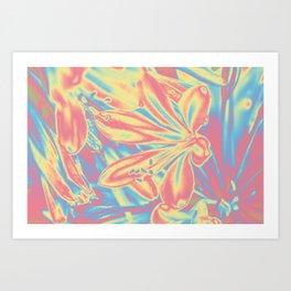 colorful blossoms Art Print