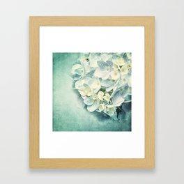 MINT HYDRANGEA Framed Art Print