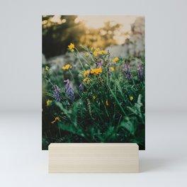Wildflower meadow by the sea   Sweden Mini Art Print