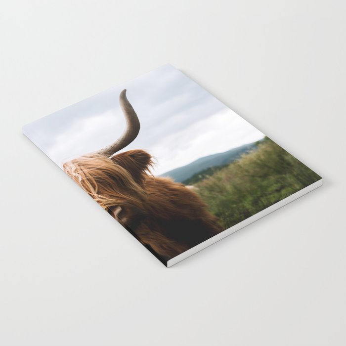 Scottish Highland Cattle in Scotland Portrait II Notebook