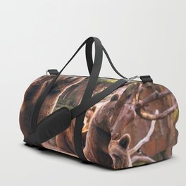 Spectecular Group Gracious Grizzly Bears Sitting In Habitat Waving At Camera Ultra HD Duffle Bag