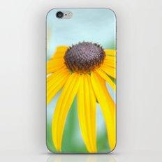 Daisy II iPhone & iPod Skin