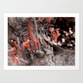 October Autumn Art Print