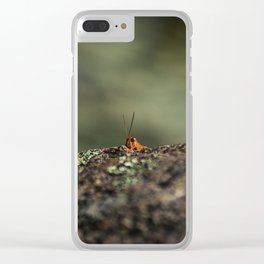 The Cliffhanger Clear iPhone Case