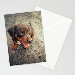 funny puppy Stationery Cards