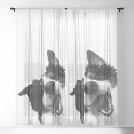 Black and White Happy Dog Sheer Curtain