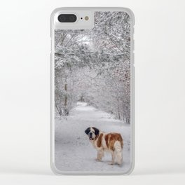 St Bernard dog in the snowy woods Clear iPhone Case