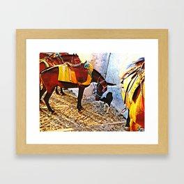 Donkey and dog 2 Framed Art Print
