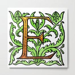 Monogram Alphabet Letter Design 'E' Metal Print