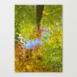Transcendence Canvas Print