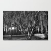 spanish Canvas Prints featuring Spanish Moss by Kent Moody