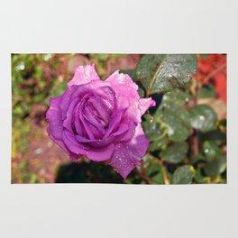Sardinian Rose Poetry Rug