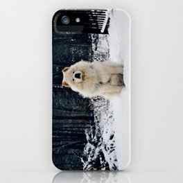 The Guard iPhone Case