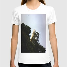 Skylines of San Francisco II T-shirt