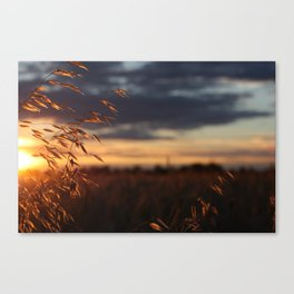 Longest Day of the Year Canvas Print