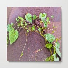 Fine Vine Metal Print