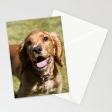 Casper the Cocker Spaniel Stationery Cards