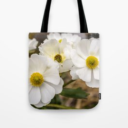 Mount Cook Lily in New Zealand Tote Bag