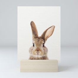 Baby Rabbit, Baby Animals Art Print By Synplus Mini Art Print