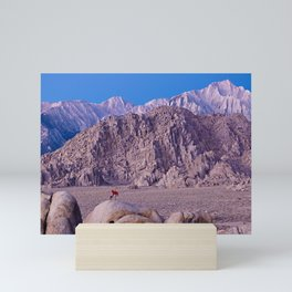 Photographer setting up a shot at Lone Pine, CA. (movie Flats) Mini Art Print