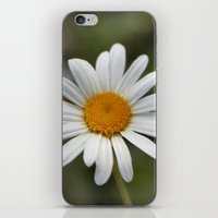 lonely iPhone & iPod Skins featuring Lonely by IowaShots