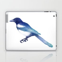 Magpie (Pica pica) - blue and turquoise Laptop & iPad Skin